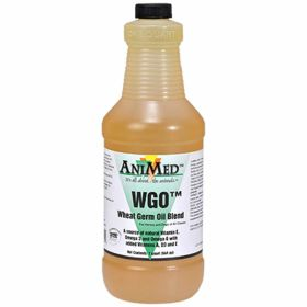 Animed: Wheat Germ Oil Blend Qt. 6/Cs