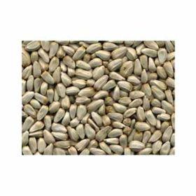 Jones Seed: Safflower 50lb