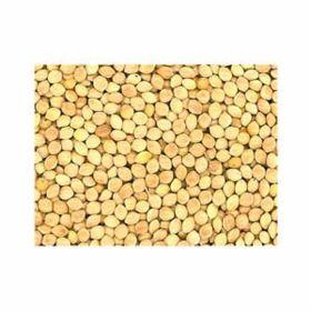 Jones Seed: White Proso Millet 50lb