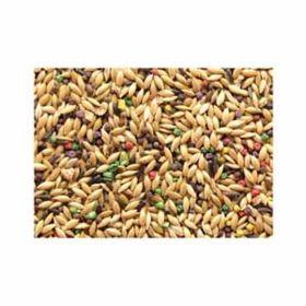 Jones Seed: Canary Grains-Plus 25lb #632
