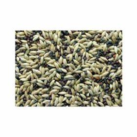 Jones Seed: Canary Blend 25lb  #500