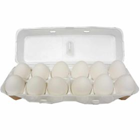 Clay Concepts: Ceramic Chicken Egg White (12)