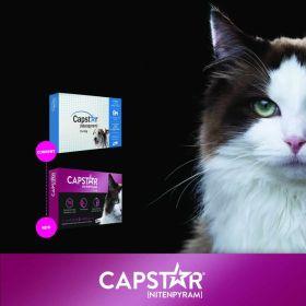 Capstar Flea Tabs-Cats (2-25#) 6pk 10/CS