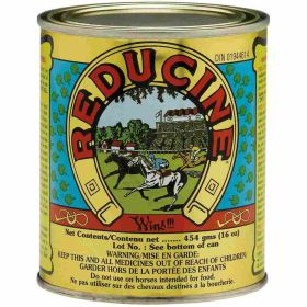 Reducine Absorbent F/Horses 16Oz