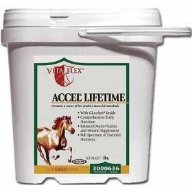 Accel Lifetime Health 10# 2/cs