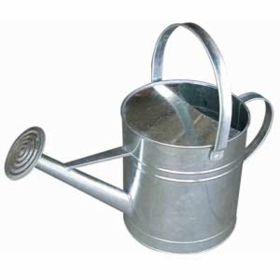 Little Giant: Galvanized Watering Can 10 Qt