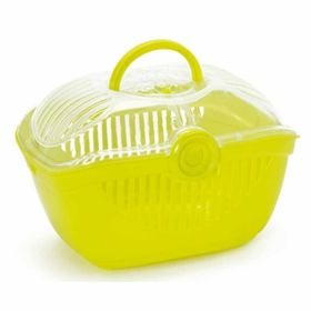Display Top Runner Large Lemon