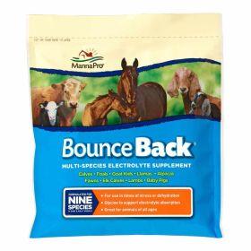 Manna Pro: Bounce Back 4lb 4/Cs