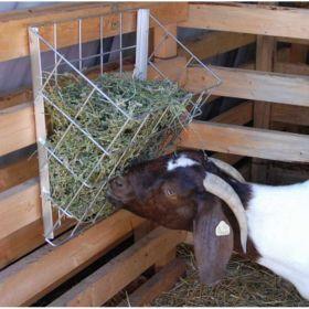 Basket Feeder Sheep& Goat 6/Cs